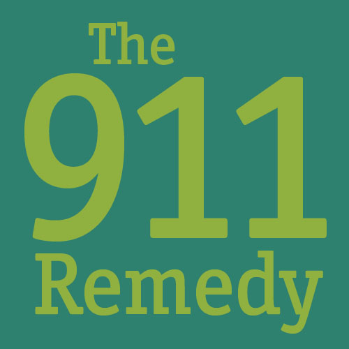 911 Remedy eBook
