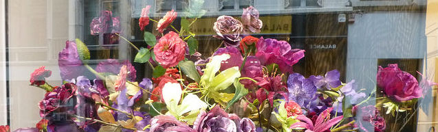 flowers-reflection-in-window